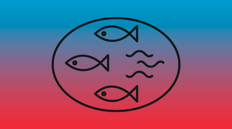 Icon nachhaltige Fischerei in den Mangroven