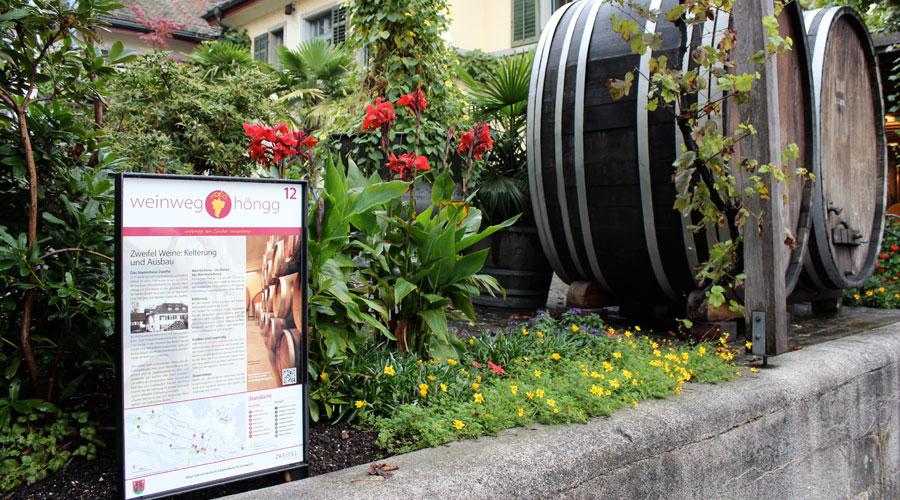 Weinweg Höngg Tafel 12