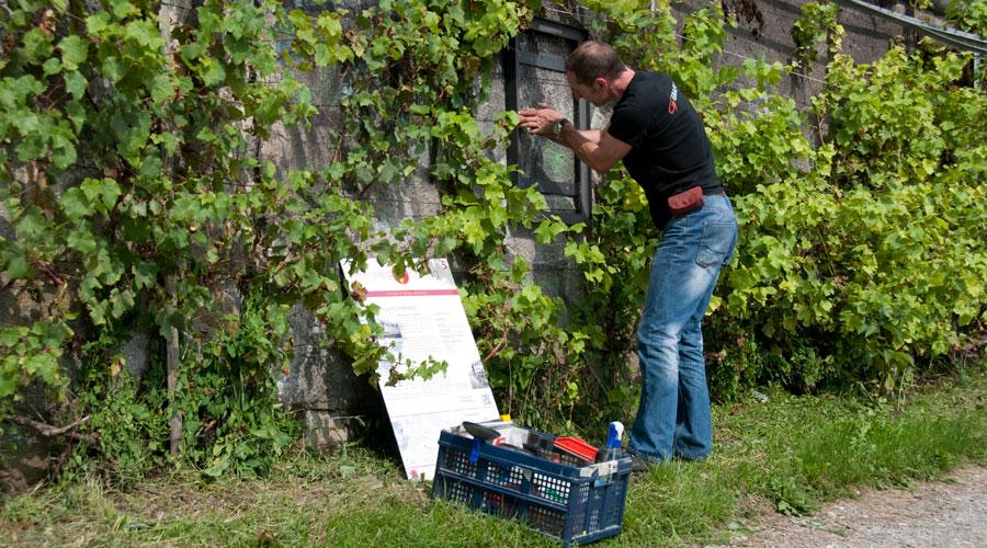 Weinweg Höngg Tafelmontage Grafitec